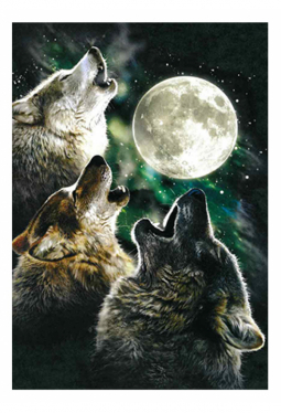 Three Wolf Moon - Kunstkarte 13 cm x 18 cm