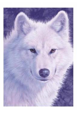 Graceful Wolf - Kunstkarte 13 cm x 18 cm