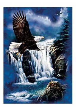 Majestic Flight - Kunstkarte 13 cm x 18 cm