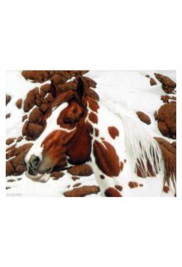 Hide And Seek 5 - Kunstkarte 14 cm x 18 cm