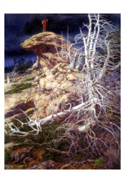 Prayer For The Wild Things - Kunstkarte 14 cm x ..