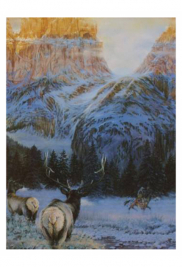 Wintering With The Wapiti - Kunstkarte 14 cm x 1..