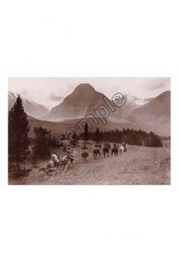 Into The Wilderness - Postkarte