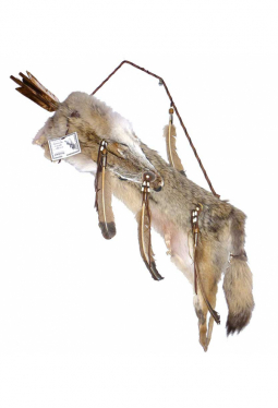Pfeilköcher Koyote - Navajo Kunsthandwerk